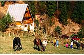 Ferienhaus Jasenská dolina Slowakei