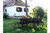 Ferienhaus Súr Ungarn