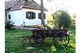 Talu Súr Ungari