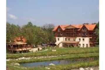 Hotel 16884 Arpasu de Sus