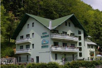 Hotel 18005 Blidari