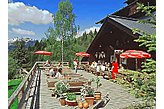 Hotel Viehhofen Österreich