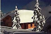 Ferienhaus Kaltenbach Österreich