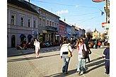 Hotel Neusatzander Donau / Novi Sad Serbien