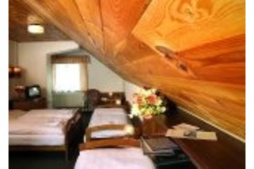 Hotel 22954 Loučná pod Klínovcem - Pensionhotel - Hotels