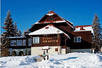 Oravice