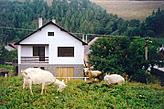 Cottage Slovinky Slovakia