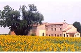 Penzion Marcaria Itálie