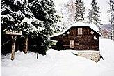 Ferienhaus Kouty nad Desnou Tschechien