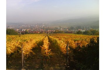 Slovensko Penzión Limbach, Exteriér