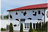 Hotel Vukovar Chorvatsko