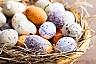 Gdzie na Wielkanoc?